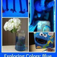 Exploring the Color Blue