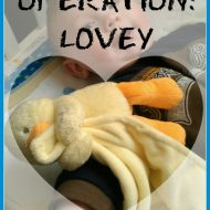 Operation: Lovey – Tips on Introducing a Lovey