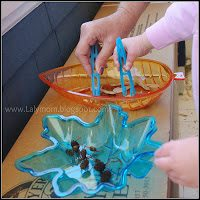 Life Skills Trasnfer Practice Using Tongs and Seeds for Montessori Work from Lalymom