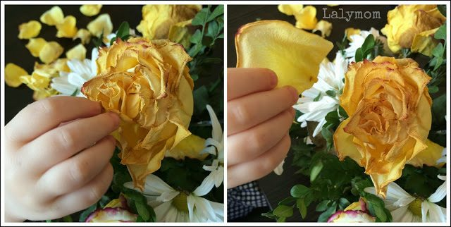 Plucking Flower Petals: 10 Fine Motor Plays for Kids from Lalymom #FineMotor