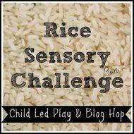 Basic Sensory Activities