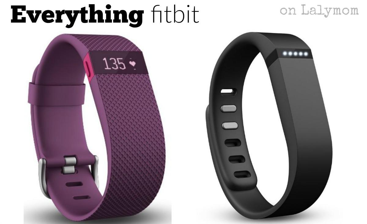 1e15f98d1c7b Celebrity Secret Diet Fitbit one tips