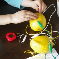 Lemon Battery Experiment Plus 4 STEM Extension Activities