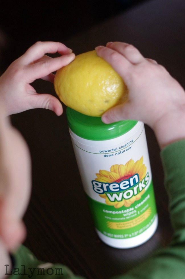Lemon Electricity Experiment - 4 Extension Ideas to Learn from Lemons sponsored by Green Works