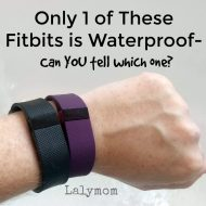 Are Fitbits Waterproof? Find Out Which Models Are.