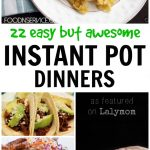 22 Easy but awesome Instant pot dinners - Easy recipes for your family, ready in a flash using an electric pressure cooker.