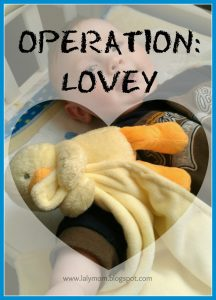 Lalymom Operation Lovie Introducing a Lovey to your baby tips