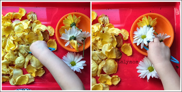 Tweezing and other Ideas for Using Flowers for Fine Motor Development from Lalymom