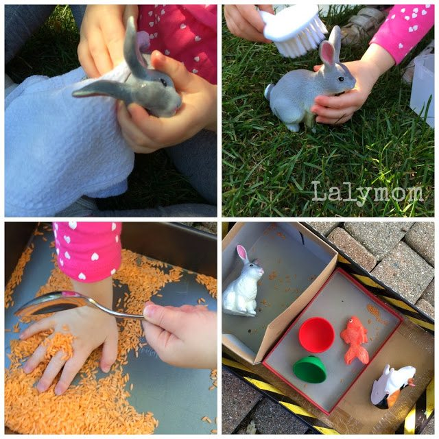 Pet Shop Pretend Play for Fine Motor Fun from Lalymom