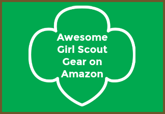 An Open Letter To New Girl Scout Leaders Lalymom