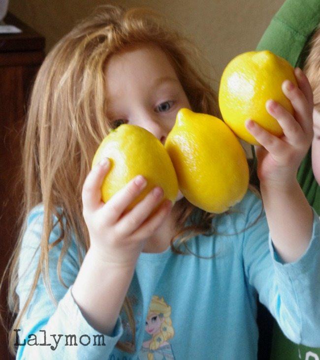 Lemon STEM Challenge - Lift a Lemon Engineering Challenge - Lemon Battery Experiment Extender Sponsored by Green Works