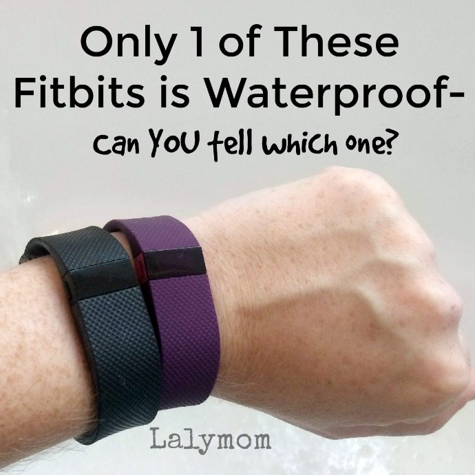 Which of these identical fitbits is fully waterproofed