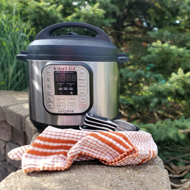 37+ Quick and Awesome Instant Pot Camping Recipes