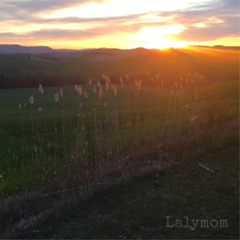 Fonte Bertusi Review – Vacation Rental in Tuscany