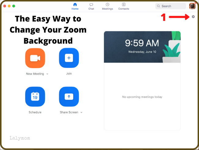 The Easy Way to Change Your Zoom Background - Step 1 (1)